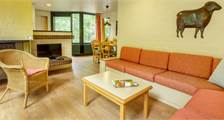 Comfort cottage EP81 at Center Parcs Erperheide