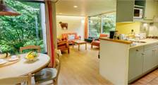 Comfort cottage EP84 at Center Parcs Erperheide