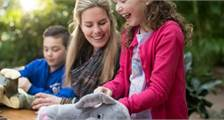 Kids Workshop: Make your own Stuffed Animal at Center Parcs Het Heijderbos