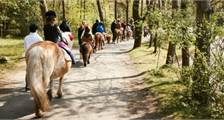 Pony ride at Center Parcs Het Heijderbos