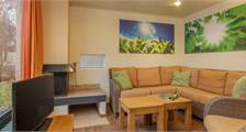 Premium cottage HH623  at Center Parcs De Huttenheugte
